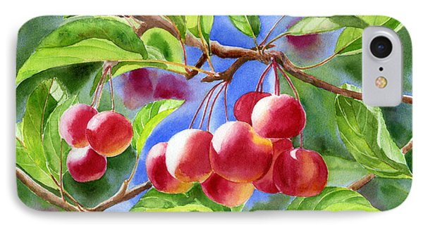 Red Crab Apples With Background IPhone Case