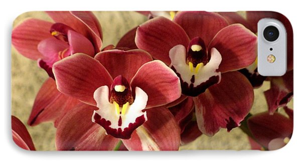 IPhone Case featuring the photograph Red Cymbidium Orchid by Alfred Ng