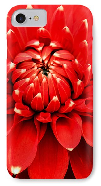IPhone Case featuring the photograph Red Dahlia With White Tips by E Faithe Lester