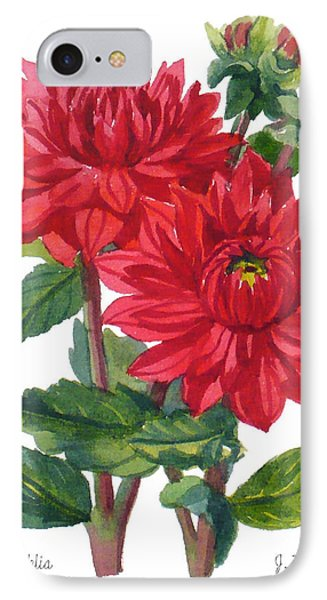 Red Dahlias IPhone Case by Janet  Zeh