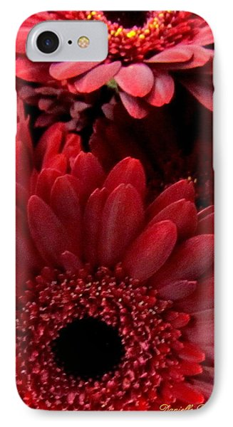 Red Daisies Phone Case by Danielle  Parent
