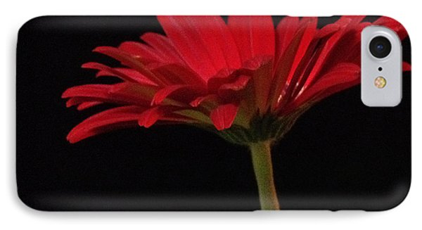 Red Daisy 2 IPhone Case
