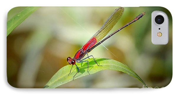 Red Damselfly Phone Case by Peggy Franz