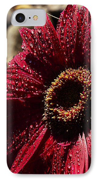Red Dew IPhone Case by Joe Schofield
