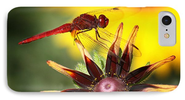IPhone Case featuring the photograph Red Dragonfly by Martina  Rathgens