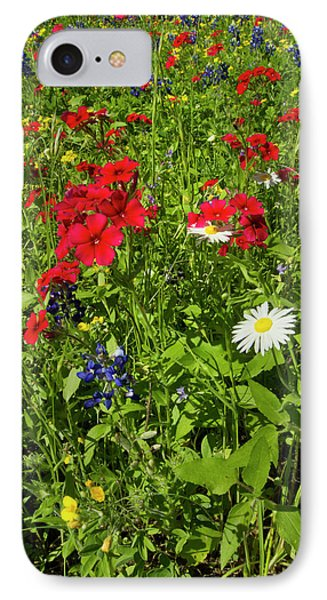 Red Drummond Phlox (phlox Drummondii IPhone Case