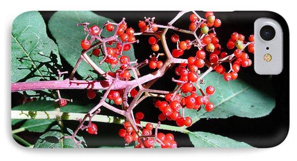 Red Elderberry IPhone Case by Cheryl Hoyle