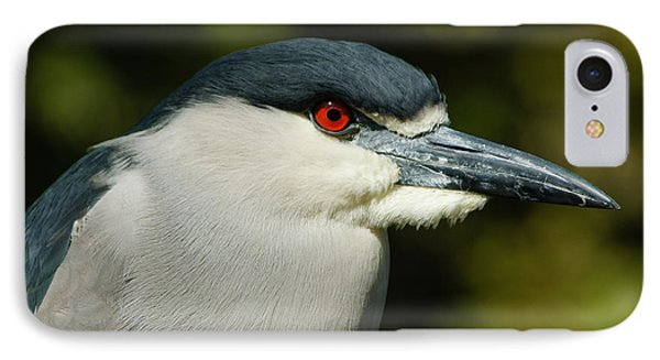 IPhone Case featuring the photograph Red Eye - Black-crowned Night Heron Portrait by Georgia Mizuleva
