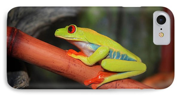 Red Eyed Tree Frog IPhone Case by Cathy  Beharriell