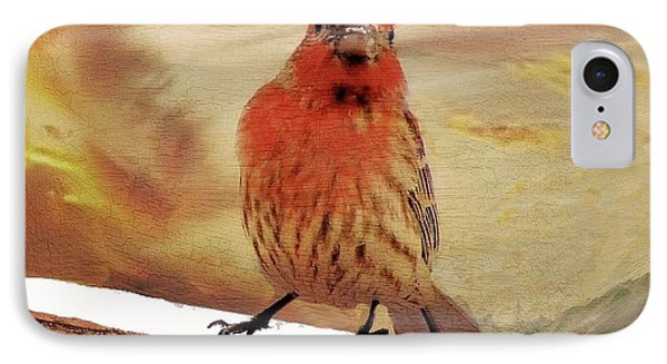 Red Finch On Red Brick IPhone Case