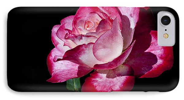 IPhone Case featuring the photograph Red Flame by Doug Norkum