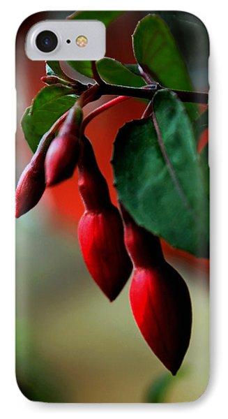 Red Flower Buds IPhone Case by Pamela Walton