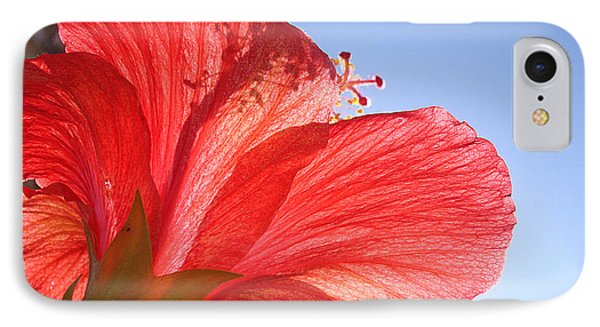 Red Flower In The Sun By Jan Marvin Studios IPhone Case
