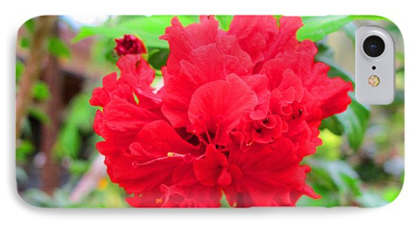 Red Flower IPhone Case by Sergey Lukashin