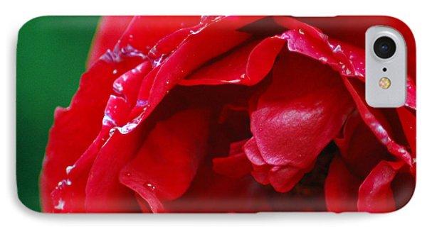 IPhone Case featuring the photograph Red Flower Wet by Matt Harang