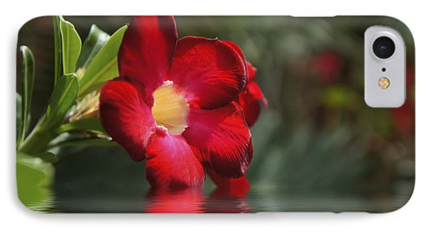 Red Flowers IPhone Case by Aged Pixel