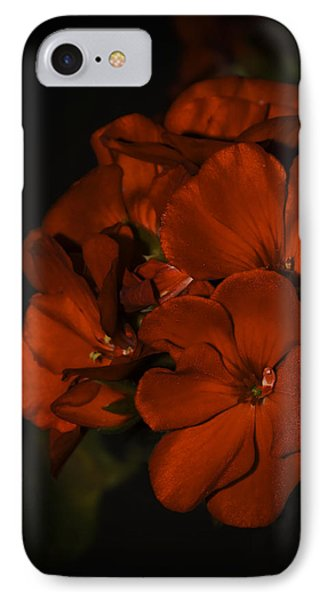 IPhone Case featuring the photograph Red Flowers In Evening Light by Lucinda Walter