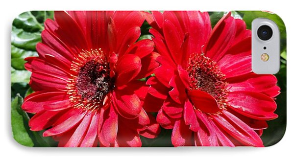 IPhone Case featuring the photograph Red Flowers by Rose Wang