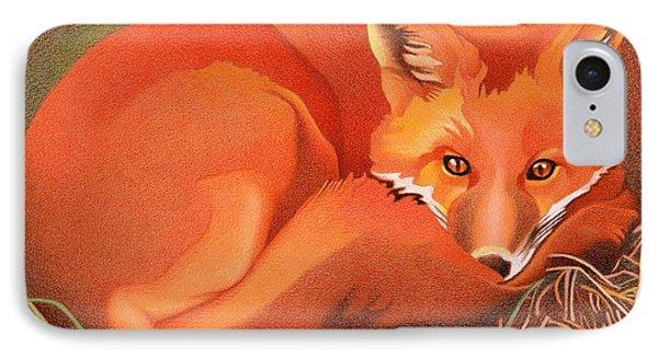 Red Fox IPhone Case by Dan Miller
