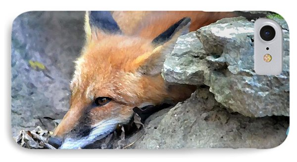 Red Fox IPhone Case by Deena Stoddard