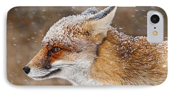 Red Fox In A Snow Storm IPhone Case by Roeselien Raimond