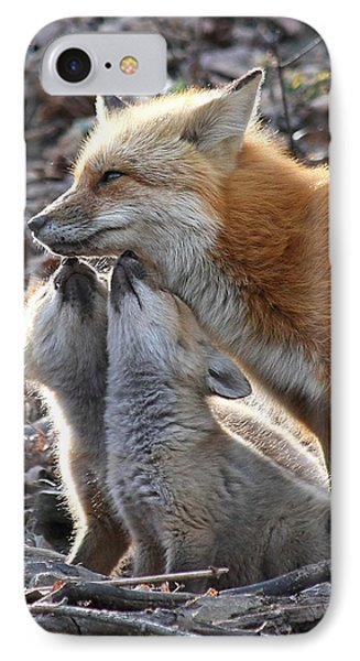 Red Fox Kits And Parent IPhone Case by Doris Potter