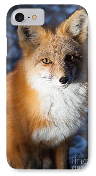 Red Fox Standing IPhone Case