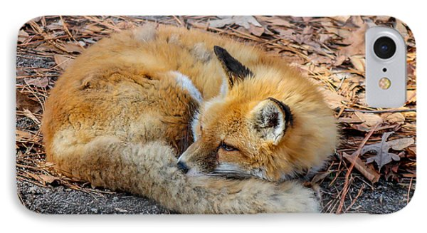 IPhone Case featuring the photograph Red Fox  by Trace Kittrell