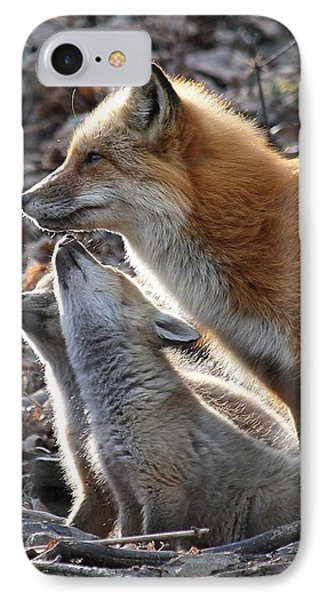 Red Fox With Kits IPhone Case by Doris Potter
