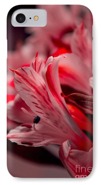 Red Freesia IPhone Case by Adria Trail