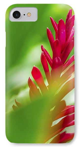 IPhone Case featuring the photograph Red Ginger Bract by Leigh Anne Meeks