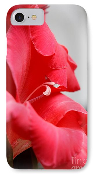 Lady In Red IPhone Case by Patti Whitten