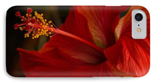 Red Hibiscus 4 IPhone Case by Frank Mari