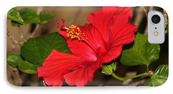 Red Hibiscus Flower IPhone Case