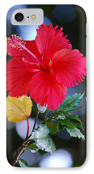 Red Hibiscus Flower Phone Case by Michelle Wrighton