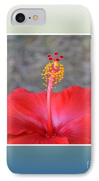 Red Hibiscus-v3 IPhone Case by Darla Wood