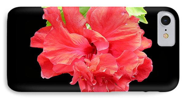 Red Hibiscus On Black IPhone Case by Karen Nicholson