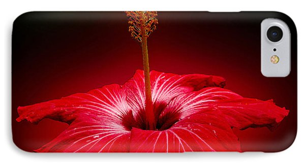 Red Hibiscus Tropical Flower IPhone Case by Carol F Austin