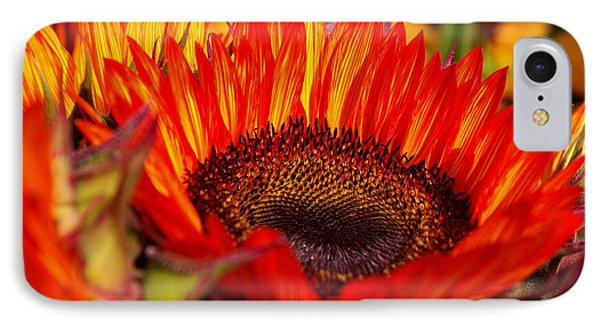Red Hot  IPhone Case by John S