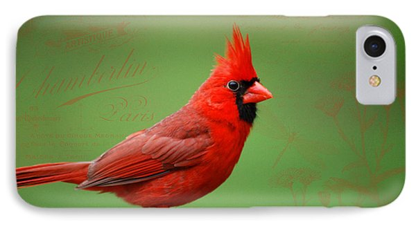 IPhone Case featuring the photograph Red It Is by Linda Segerson