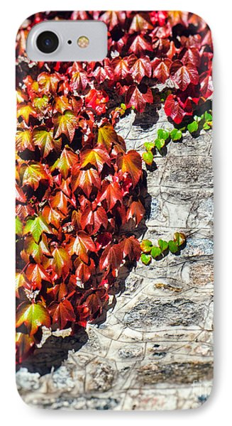 IPhone 7 Case featuring the photograph Red Ivy On Wall by Silvia Ganora