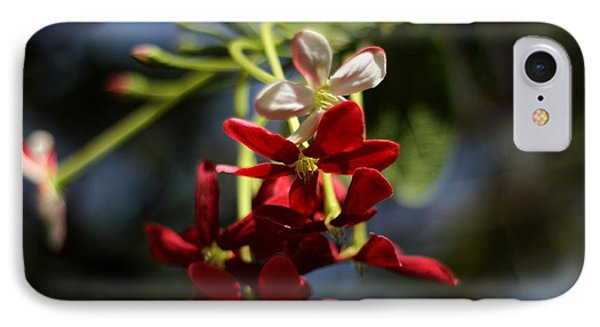 IPhone Case featuring the photograph Red Jasmine Blossom by Ramabhadran Thirupattur