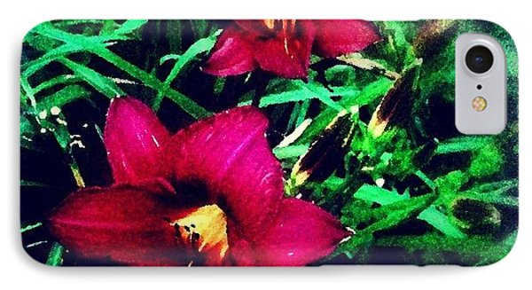 Red Jewels In The Garden IPhone Case by Paul Cutright