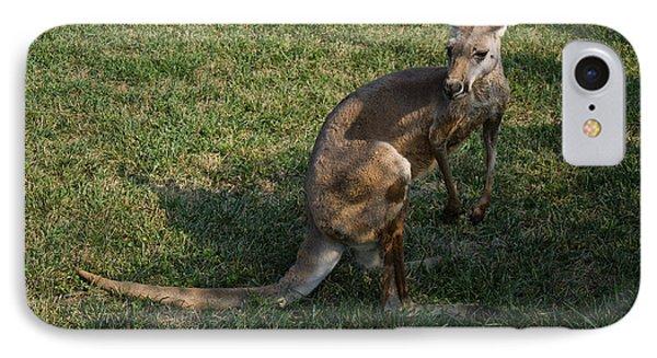 Red Kangaroo IPhone Case by Chris Flees