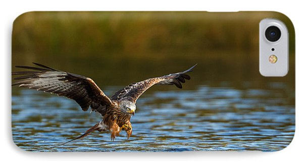 Red Kite Swooping Over Water IPhone Case by Izzy Standbridge
