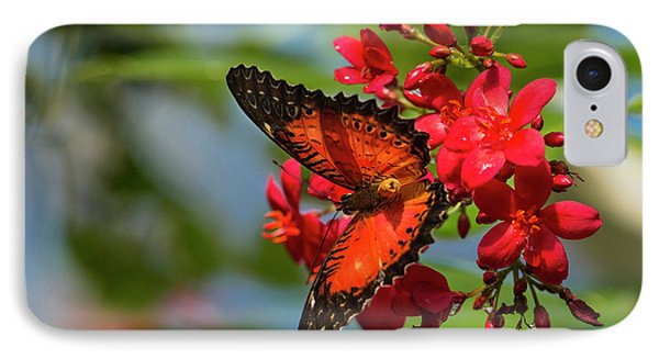 Red Lacewing Butterfly (cethosia Biblis IPhone Case