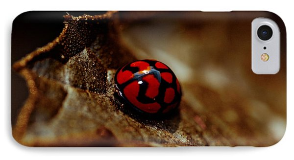 Red Lady Bug Phone Case by Isabel Laurent