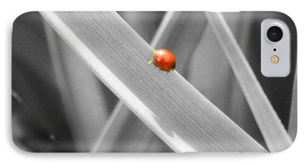 Red Ladybird Phone Case by Chalet Roome-Rigdon