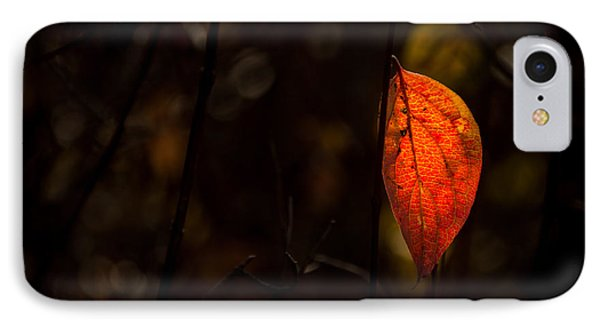 Red Leaf 2 IPhone Case by Jay Stockhaus