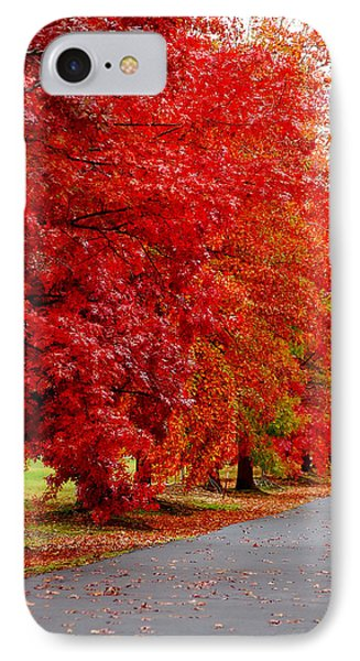 Red Leaf Road IPhone Case